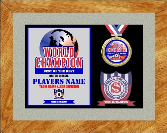 Picture of World Champion Custom Frame Award