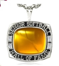 Picture of NSSHOF Women's Pendant w/Plain Stone