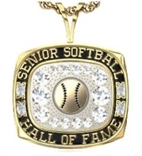 Picture of NSSHOF Women's Pendant w/Ball & Cubic Zirconias
